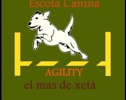 ESCUELA CANINA MAS DE XETÀ