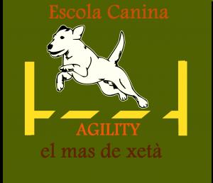escuela canina